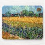 Opinión de Van Gogh de Arles con los iris Mousepad Tapetes De Ratón