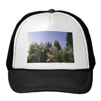 Opinión del cielo del jardín en Beaverton, Oregon Gorros Bordados