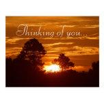 Opinión del cielo tarjeta postal
