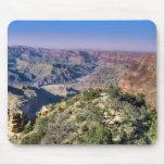 Opinión del desierto del Gran Cañón Alfombrillas De Raton