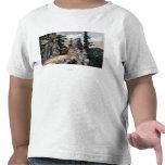 Opinión del ferrocarril de la puerta del granito camisetas