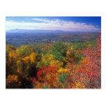 Opinión del follaje de la montaña del monumento tarjetas postales