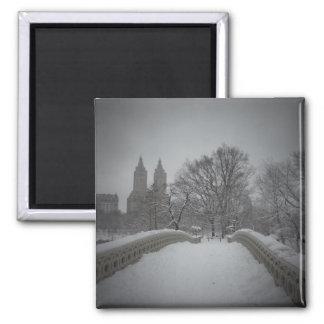 Opinión del invierno sobre el puente del arco, Cen Imán Cuadrado