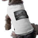 Opinión del invierno sobre el puente del arco, Cen Camisetas De Perrito