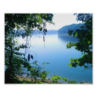 Opinión del lago a través de árboles arte fotográfico