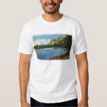 Opinión del lago de la montaña del elefante playera