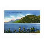 Opinión del lago de la montaña del salto de los tarjetas postales