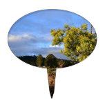 Opinión del lago Lillydale Decoración Para Tarta
