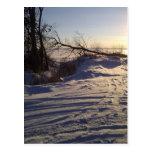 Opinión del lago snowy postal