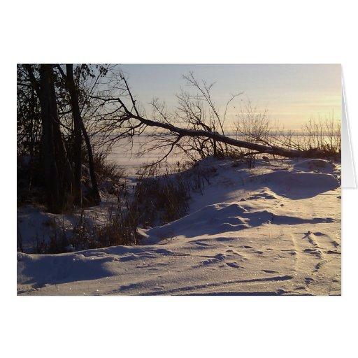 Opinión del lago snowy tarjeta de felicitación