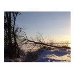 Opinión del lago snowy tarjetas postales
