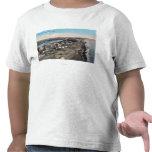 Opinión del ojo de pájaro de TownNome, AK Camiseta