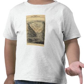 Opinión del ojo de pájaro, valle del lago honey camiseta