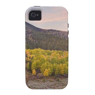 Opinión del otoño de Bananza iPhone 4 Carcasas