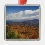 Opinión del otoño de montañas apalaches meridional adorno de reyes