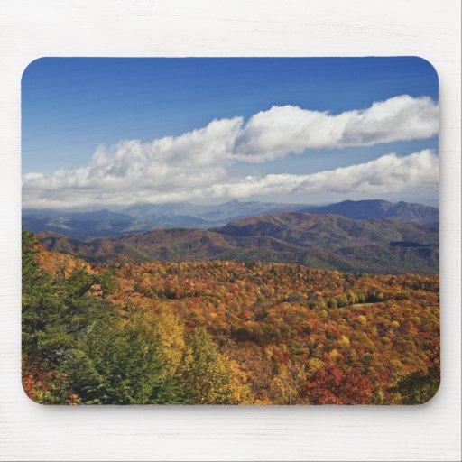 Opinión del otoño de montañas apalaches meridional alfombrilla de ratones
