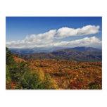 Opinión del otoño de montañas apalaches meridional tarjeta postal