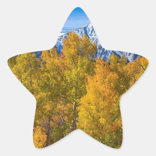 Opinión del otoño del paso de la independencia calcomanías forma de estrellas