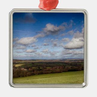 Opinión del paisaje ornaments para arbol de navidad