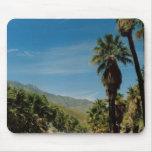 Opinión del Palm Springs Tapetes De Raton