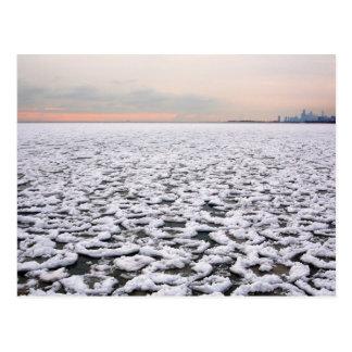 Opinión del parque de Rogers del lago Michigan en Postal
