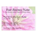 Opinión del primer de un zinnia rosado delicado plantillas de tarjetas personales
