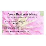 Opinión del primer de un zinnia rosado delicado plantilla de tarjeta personal