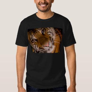 Opinión del primer del tigre playeras