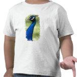 Opinión del primer el pavo real, jardines camiseta