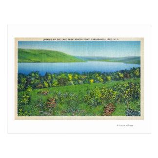 Opinión del punto del Seneca del lago Postales