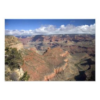 Opinión del sur del Gran Cañón Arizona del borde Arte Con Fotos