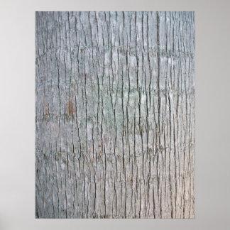 Opinión detallada del tronco de palmera poster