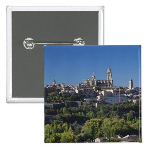 Opinión elevada de la ciudad con la catedral de Se