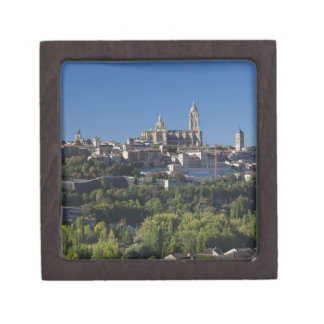 Opinión elevada de la ciudad con la catedral de Se Caja De Recuerdo De Calidad