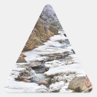 Opinión helada cala del retrato de Boulder Nevado Pegatinas De Trianguladas