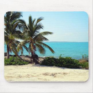 Opinión la isla caribeña Eleuthera, Bahamas Tapetes De Ratones