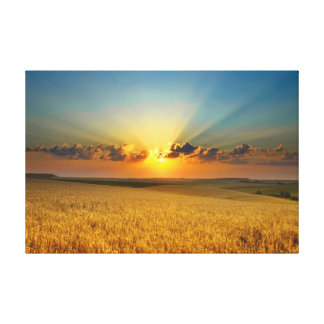 Opinión majestuosa de campos de trigo impresión en lienzo estirada
