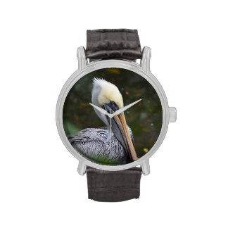 opinión marrón de la cabeza del pelícano que hace relojes de pulsera