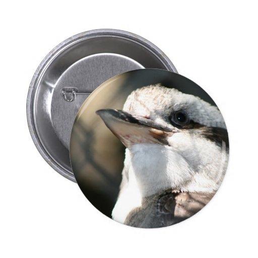 opinión marrón y blanca de la cabeza del pájaro