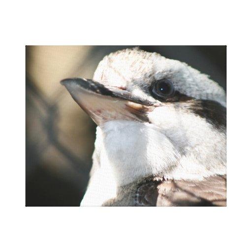 opinión marrón y blanca de la cabeza del pájaro impresión en lona estirada