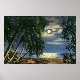 Opinión Miami Beach de la playa del claro de luna Póster