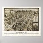 Opinión panorámica de ojo de 1912 pájaros del mapa poster