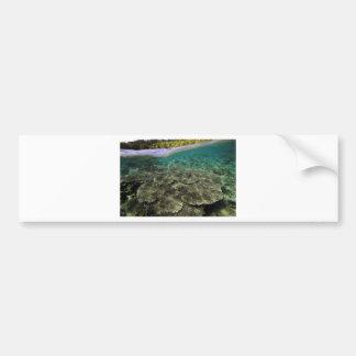 Opinión subacuática del arrecife de coral tropical etiqueta de parachoque