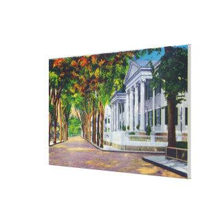 Opinión superior de calle principal de mansiones c impresión en lienzo