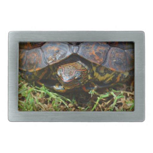 Opinión superior saturated.jpg de la tortuga adorn hebilla cinturon rectangular
