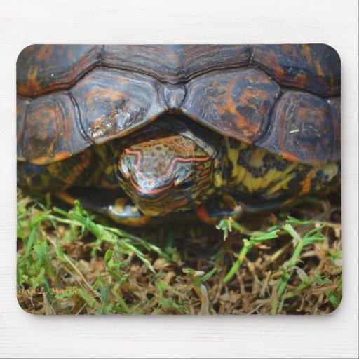 Opinión superior saturated.jpg de la tortuga adorn tapetes de ratón