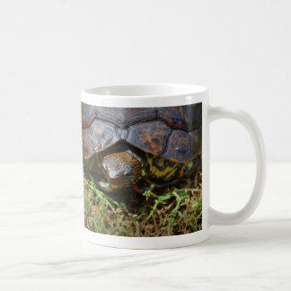 Opinión superior saturated.jpg de la tortuga adorn tazas