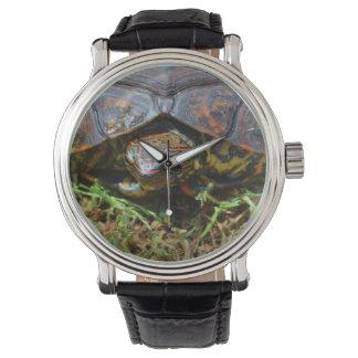 Opinión superior saturated.jpg de la tortuga reloj de mano