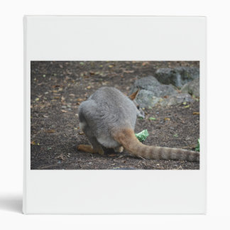 opinión trasera del wallaby que mira sobre animal