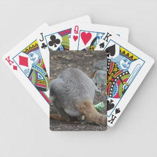 opinión trasera del wallaby que mira sobre animal cartas de juego